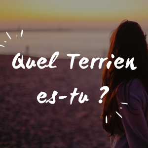 Quel Terrien es-tu _